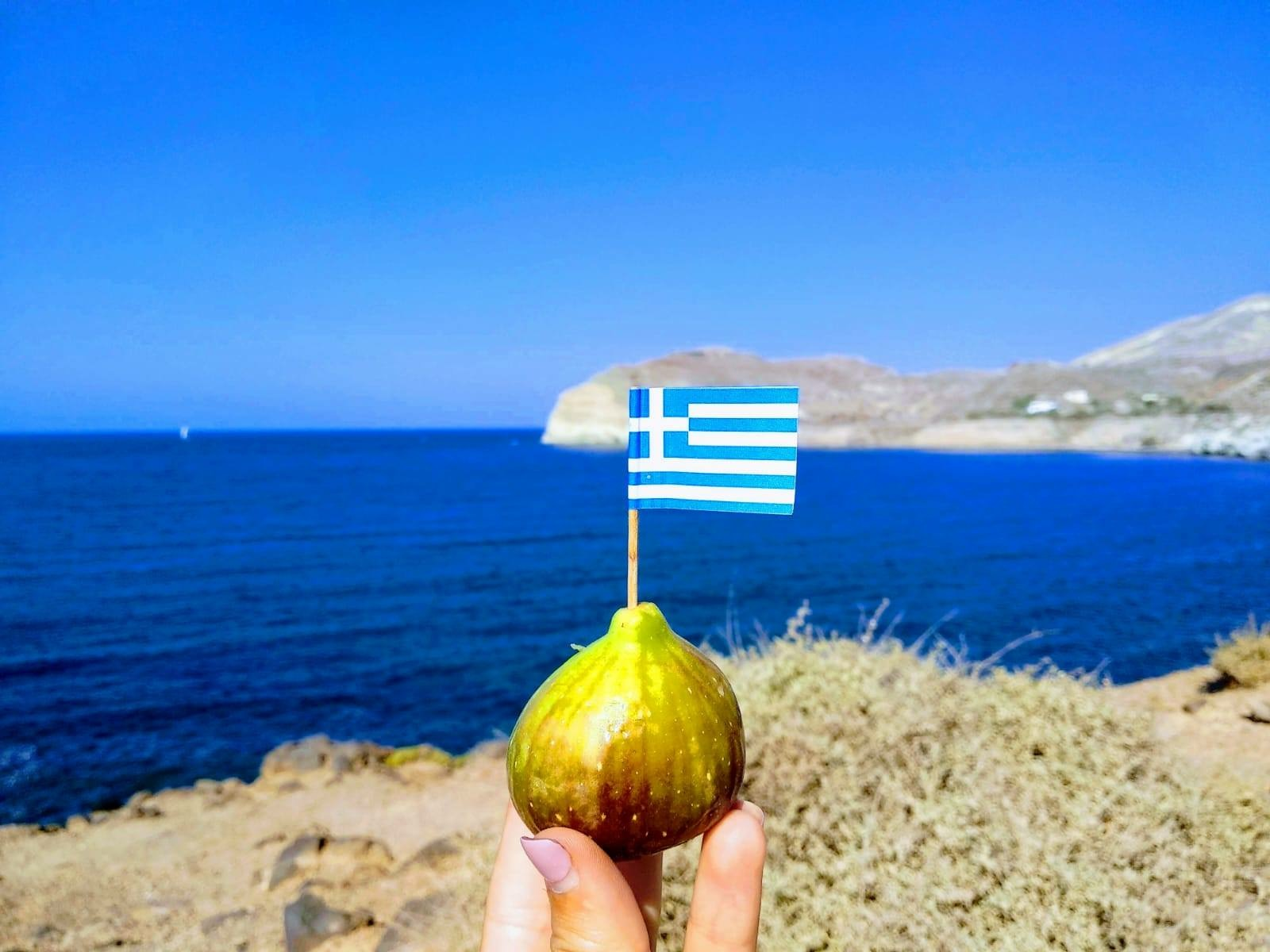 Higo con bandera griega